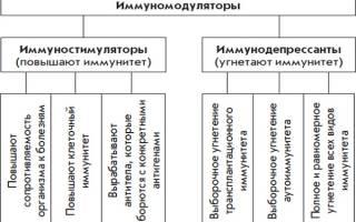 Иммуномодуляторы растительного происхождения препараты