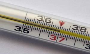 Какая температура тела считается нормальной у взрослых