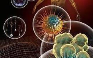 Пути повышения иммунитета