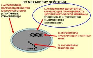 Классификация по происхождению антибиотиков